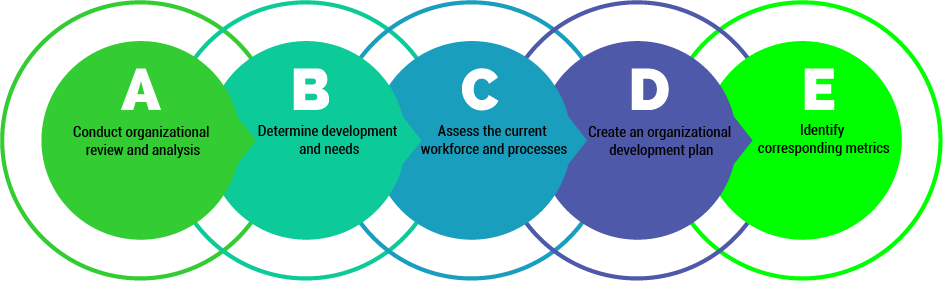 org develop steps